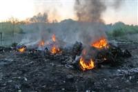 В Туле сборщики металла травят город дымом, Фото: 10