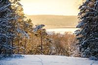 Снежное Поленово, Фото: 38
