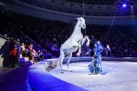 Туляков приглашают на новогоднее представление «Ёлка в цирке», Фото: 86