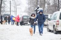 Всероссийская выставка собак 2017, Фото: 60