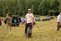Выставка охотничьих собак под Тулой, Фото: 79