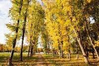 Золотая осень в Туле-2019, Фото: 34