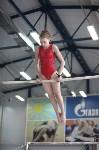 Соревнования по спортивной гимнастике на призы Заслуженных мастеров спорта , Фото: 62