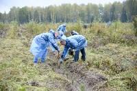 В Веневском районе высажено 24 тысячи сосен, Фото: 7