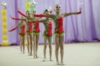 Соревнования «Первые шаги в художественной гимнастике», Фото: 47