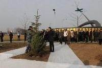 Возле мемориала «Защитникам неба Отечества» высадили еловую аллею , Фото: 17