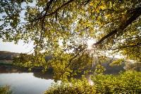 Золотая осень в Тульской области, Фото: 64