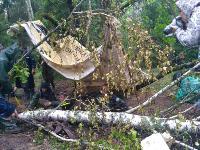 В Тульской области в лесу поисковики нашли захоронение артиллеристов и лошадей, Фото: 11