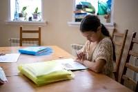 Домашнее обучение. Семья Семиных, Фото: 16