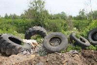 В тульском Заречье жители год добиваются ликвидации ядовитой свалки, Фото: 32