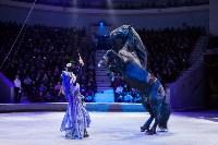 Туляков приглашают на новогоднее представление «Ёлка в цирке», Фото: 88