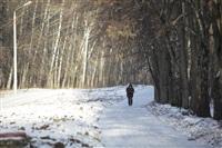 Центральный парк культуры и отдыха им. Белоусова. Декабрь 2013, Фото: 10