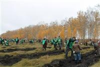 В музее-заповеднике «Куликово поле» высадили 6 тысяч деревьев, Фото: 12