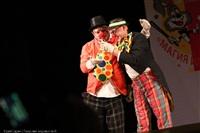 Фестиваль «Магия иллюзии и смеха», Фото: 8