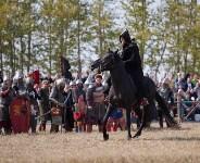 На Куликовом поле с размахом отметили 638-ю годовщину битвы, Фото: 78