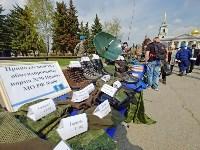День Тульской дивизии ВДВ: на площади Ленина приземлились парашютисты, Фото: 111