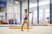 Спортивная гимнастика в Туле 3.12, Фото: 179