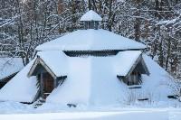 Снежное Поленово, Фото: 78