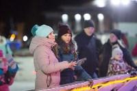 В Туле завершились новогодние гуляния, Фото: 21