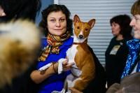 Выставка собак в Туле, Фото: 62