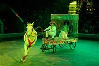 Цирк «Вива, Зорро!» в Туле , Фото: 68