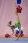 Соревнования по художественной гимнастике 31 марта-1 апреля 2016 года, Фото: 22