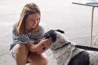 В тульском «Макси» прошел благотворительный фестиваль помощи животным, Фото: 8