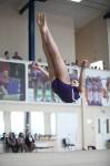 Соревнования по спортивной гимнастике на призы Заслуженных мастеров спорта , Фото: 45