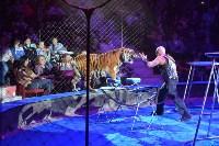 Цирковое шоу, Фото: 127