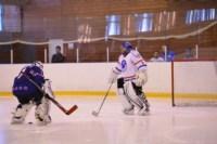 Легенды советского хоккея в Алексине., Фото: 115