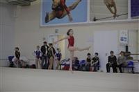 Открытый турнир по спортивной гимнастике. 23-30 ноября 2013, Фото: 4