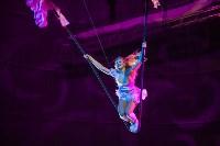 Туляков приглашают на новогоднее представление «Ёлка в цирке», Фото: 11