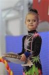 IX Всероссийский турнир по художественной гимнастике «Старая Тула», Фото: 12