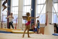 Спортивная гимнастика в Туле 3.12, Фото: 107