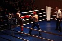 В Туле прошла матчевая встреча звезд кикбоксинга, Фото: 46