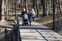 Солнечный день в Белоусовском парке, Фото: 29