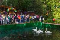 Запуск лебедей в верхний пруд Центрального парка Тулы, Фото: 20
