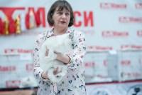 """Выставка """"Пряничные кошки"""" в ТРЦ """"Макси"""", Фото: 32"""