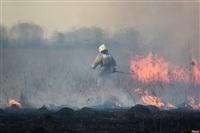 Сразу в нескольких районах Тульской области загорелись поля, Фото: 3