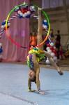Соревнования по художественной гимнастике 31 марта-1 апреля 2016 года, Фото: 85