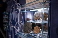 филиал музея Ясной Поляны в Музейном квартале, Фото: 10