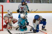 В Новомосковске завершился Кубок Федерации хоккея Тульской области среди дворовых команд, Фото: 7