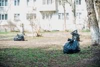 Посадка деревьев во дворе на ул. Максимовского, 23, Фото: 21