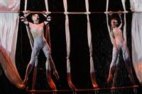 В Тульском цирке прошла премьера аква-шоу, Фото: 39