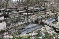 С заброшенных очистных канализация много лет сливается под заборы домов, Фото: 34