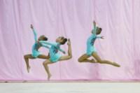 Межрегиональный турнир по художественной гимнастике — «Осенний вальс». 6-7 сентября 2014, Фото: 7