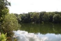 Жители Зеленстроя: Что хотят построить  в Платоновском парке?  , Фото: 19
