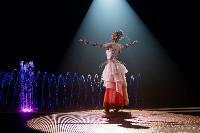 Шоу фонтанов «13 месяцев»: успей увидеть уникальную программу в Тульском цирке, Фото: 52