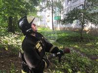 При пожаре на ул. Серебровской в Туле погибли три человека, Фото: 2