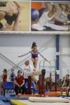 Спортивная гимнастика в Туле 3.12, Фото: 111